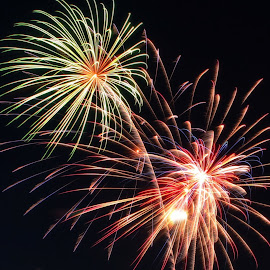 Fireworks by Maureen Rueffer - News & Events Entertainment ( fireworks )