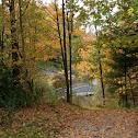 Fall scenery