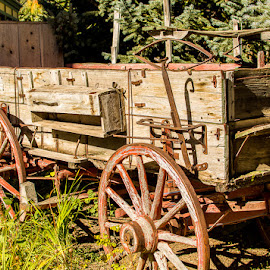 Old Wagon by Corey Nook - Transportation Other ( old, wagon, breckenridge, rusty, west,  )