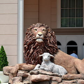 Lion and Lamb Statue by Chris Baily - Buildings & Architecture Statues & Monuments