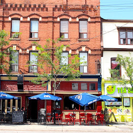 Spadina Avenue by Ronnie Caplan - City,  Street & Park  Street Scenes ( signs, facades, umbrellas, streetscene, toronto, buildings, patio, trees, architectural details, windows, restaurants )