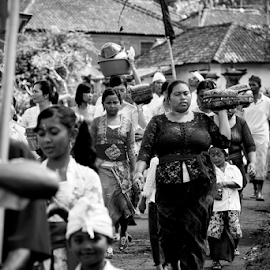 Procession Day by Ferdinand Ludo - News & Events World Events ( procession, parade, bali, indonesia, offering foods, gifts )