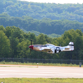 P51 Mustang Low Pass by John Cardillo - Transportation Airplanes ( airport, mustang, p51, plane, airplane, low pass, airshow,  )