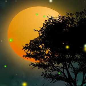 Nature Fireflies LiveWallpaper