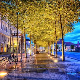 Klagenfurt by Cristian Peša - City,  Street & Park  Night