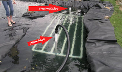 how to clean out a bog filter