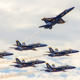Blue Angels by Barton Bishop - Transportation Airplanes ( pensacola, airplanes, blue, florida, jets, angels, military, air show )