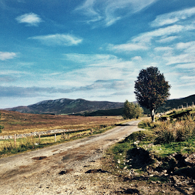 Skye by Alina Jumabhoy - Instagram & Mobile iPhone ( scotland, skye, road, travel, island )