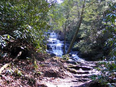 Falls Peeking Through the Trail