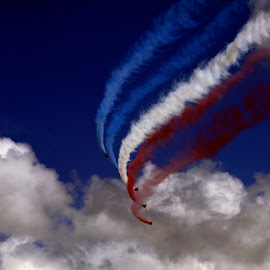 Red, Blue & White Arrows by Stephen Arrandale - Transportation Airplanes