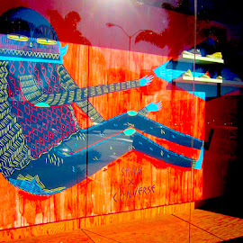 Stink x Converse by Ronnie Caplan - Artistic Objects Clothing & Accessories ( running shoes, reflection, fashion, colourful, glass, display, store window )