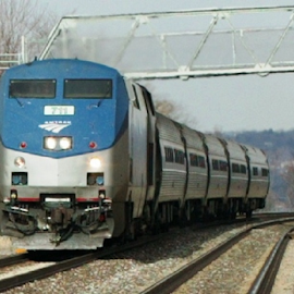 Amtraker headin south by Alec Halstead - Transportation Trains (  )