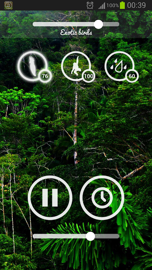 Forest Sounds - Nature & Sleep Screenshot 5