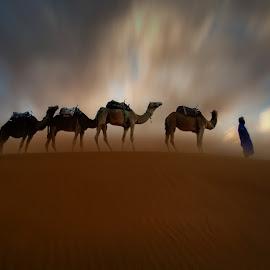 Hypnotic Desert I by Moussa Idrissi - Landscapes Deserts