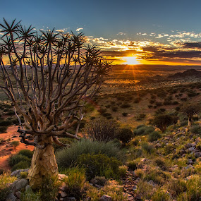 keimoes by Theuns de Bruin - Landscapes Sunsets & Sunrises ( ksa )
