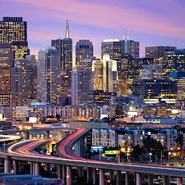 San Francisco Skyline by Zach Wills - City,  Street & Park  Skylines ( skyline, sunset, light trails, long exposure, san francisco, city, night )
