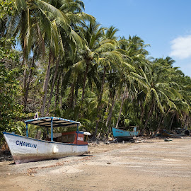 Chavelin's Hood by Alejo Cedeno - Landscapes Beaches ( panama, shipwreck, colorful, boats, beach, isla gobernadora, palms, abandoned )