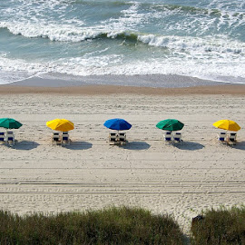 Settin' Up by Tracy Harp - Landscapes Beaches ( umbrellas, umbrella, beach, myrtle beach )