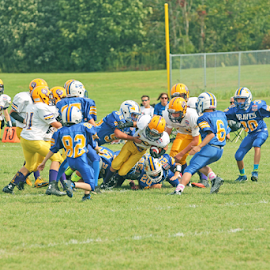 by Dave Hollub - Sports & Fitness American and Canadian football (  )
