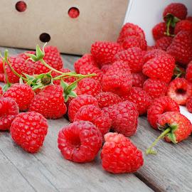 Spilled Berries by David Kreutzer - Food & Drink Fruits & Vegetables ( spilled, fresh picked, raspberries, berries )