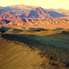 Death Valley Vista by Brian Blood - Landscapes Deserts ( death valley, sand dunes, desrt, landscape vista,  )