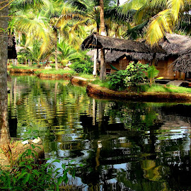 Backwaters by Adhiraj Ghosh - Novices Only Landscapes ( stream, bamboo, huts, coconut trees, morning, shade )