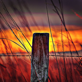 by Derrill Grabenstein - Buildings & Architecture Other Exteriors ( wood post, sunset, fence post, architecture, landscapes )