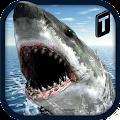 Game Crazy Shark 3D Sim apk for kindle fire