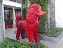 Röda Hund