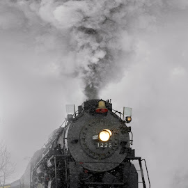 Pere Marquette 1225 by Nicole Baumchen - Transportation Trains ( winter, locomotive, snow, train, smoke, steam,  )