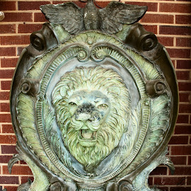 Lion's Roar by Phillip Campbell - Artistic Objects Antiques ( lion, plaque, shield, antique,  )