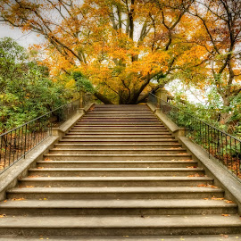 Stairway To Heaven by Linda Karlin - City,  Street & Park  Historic Districts ( architecture, landscape )
