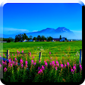 scenery live wallpapers APK for iPhone