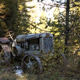 Forgotten  by Sheri McLaren - Transportation Other ( mountain scene, farm equipment, landscape, antique, tractor, rustic )