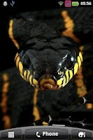 Screenshot of Angry Black Water Snake
