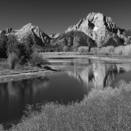 Grand Tetons in B&W by Ashley Crookes - Landscapes Mountains & Hills ( water, wilderness, national park, mountain, nature, tree, wyoming and yellowstone, grand tetons, landscpae, river, black and white, b&w, landscape )