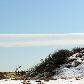 Parker River National Refuge by Diane Mondalto - Landscapes Beaches ( sand dune, snow, cloud )