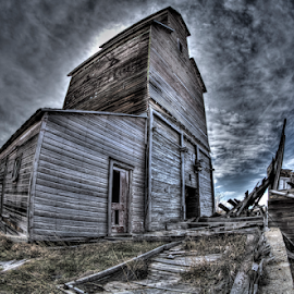 Grain by Dave Zuhr - Buildings & Architecture Decaying & Abandoned ( old, grain, d_zuhr, dzuhr, west,  )