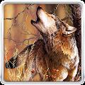 Wolf Live Wallpaper APK for Ubuntu