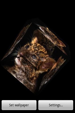 3D cute leopard