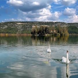 Krka, Visovac by Cristian Peša - Landscapes Waterscapes