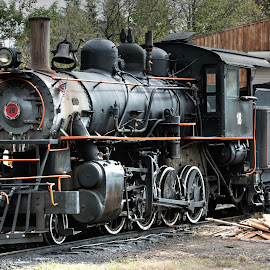 Ready to go by Michael Wolfe - Transportation Trains ( steam engine, coal tender, engine, train, antique train engine,  )
