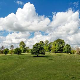 Danebury by Rick Aplin - Landscapes Cloud Formations