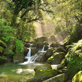 竹崙溪斜光 -- 感謝 楊永恆老師熱情指導 by Damon Chao - Landscapes Waterscapes