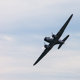DC-3 flyby by Filip Trinajstić - Transportation Airplanes ( ww2, old, vintage, airplane, low pass, flyby, race, old plane, plane, douglas, red bull air race, clip engine, aircraft, piston, dc-3, classic, airshow )