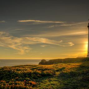 Light behind the Lighthouse by Dan Girard - Landscapes Sunsets & Sunrises ( water, dan_girard_photography, nature, 2014, ocean, seascape, beach, rocks, dan-girard-photography )