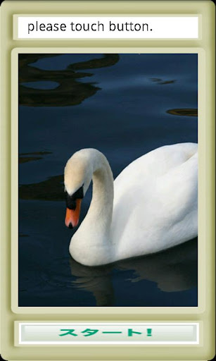 白鳥ジグソー