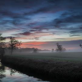 Blue Hour by Artur Szczeszek - Landscapes Prairies, Meadows & Fields ( somerset, fog, blue, trees, hour, , relax, tranquil, relaxing, tranquility )