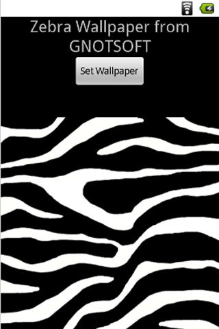 Zebra Wallpaper Background