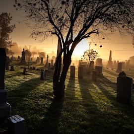 Memories  by Gabriel Lungu - City,  Street & Park  Cemeteries